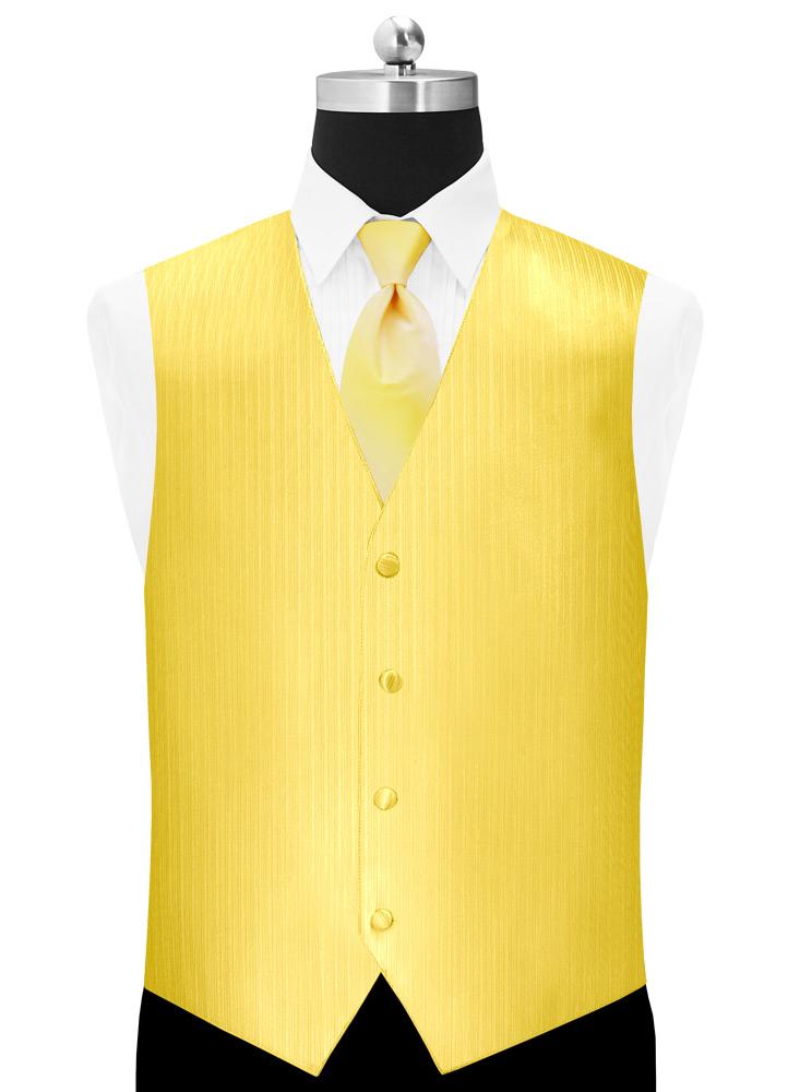 Sunbeam 'Vertical' Tuxedo Vest